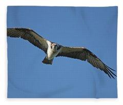 Fixation Fleece Blanket