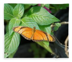 Fleece Blanket featuring the photograph Flambeau Butterfly by Paul Gulliver