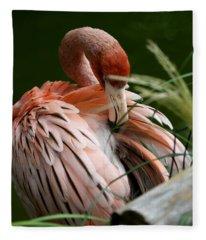 Flamingo Boudoir Fleece Blanket