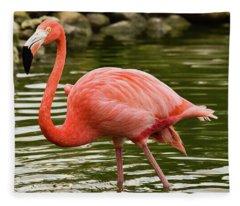 Flamingo Wades Fleece Blanket