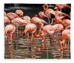 Flamingo Looking For Food Fleece Blanket