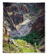 Flat Iron Waterfall Basin Fleece Blanket
