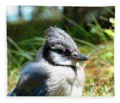Fledgling Fleece Blanket
