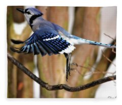 Flight Of The Blue Jay Fleece Blanket