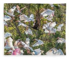 Flock Of Mixed Birds Taking Off Fleece Blanket