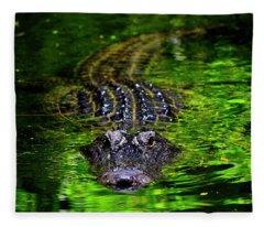 Florida Alligator Encounter Fleece Blanket