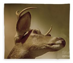 Florida Deer Fleece Blanket