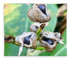Flower Seed Pod Fleece Blanket