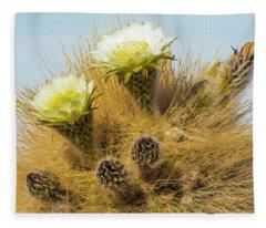 Flowering Cactus, Bolivia Fleece Blanket