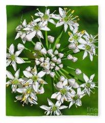 Flowering Garlic Chives Fleece Blanket