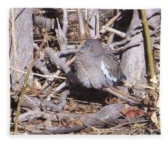 Fluffy Dove Fleece Blanket