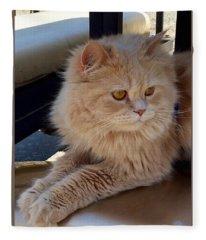 Fluffy Persian Kitty Fleece Blanket
