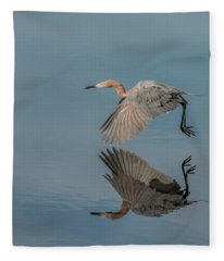 Fly By Reflection Fleece Blanket