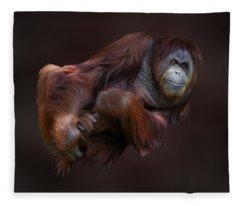 Folded Orangutan Fleece Blanket