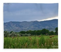 Foothills Of Fort Collins Fleece Blanket