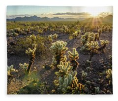 Sea Of Cholla Fleece Blanket