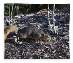 Squirrel Pprh Woodland Park Co Fleece Blanket