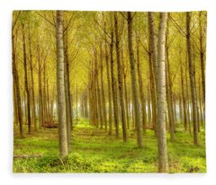 Forest In Autumn Fleece Blanket