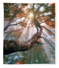 Forest With Fog And Sun Rays Fleece Blanket