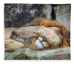 Fort Worth Zoo Sleepy Lion Fleece Blanket
