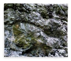 Fossil In The Wall Fleece Blanket