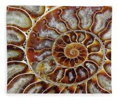 Fossilized Ammonite Spiral Fleece Blanket