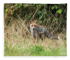 Fox In The Woods Fleece Blanket
