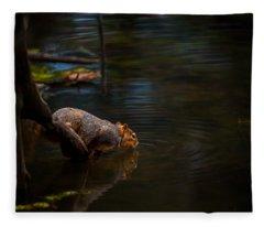 Fox Squirrel Drinking Fleece Blanket
