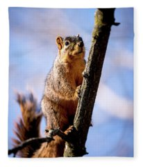 Fox Squirrel's Last Look Fleece Blanket