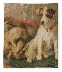 Fox Terrier With The Day's Bag Fleece Blanket