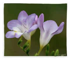 Fragrant Freesias 2 Fleece Blanket