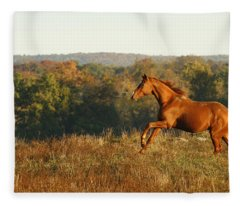 Freedom In The Late Afternoon Fleece Blanket