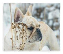 French Bulldog In The Snow Fleece Blanket