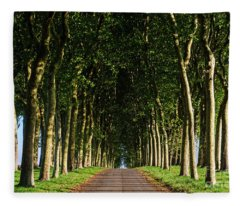 French Tree Lined Country Lane Fleece Blanket