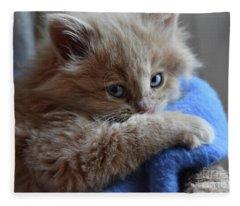Freya #1 Fleece Blanket