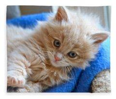 Freya #2 Fleece Blanket