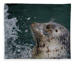 Friday Harbor's Popeye Fleece Blanket