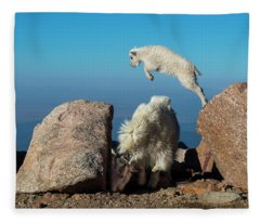 Leaping Baby Mountain Goat Fleece Blanket