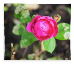 Frostbitten Rose Fleece Blanket