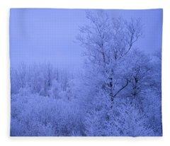 Frosty Trees At Night Fleece Blanket