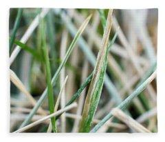 Frozen Grass Fleece Blanket