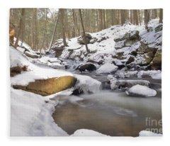 Full Scene  Winter Pool Fleece Blanket
