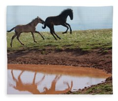 Fun In The Rockies- Wild Horse Foals Fleece Blanket