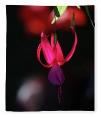 Fuschia Backlit Buchart Gardens Victoria Fleece Blanket