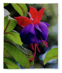 Fuschia Fleece Blanket