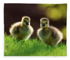 Fuzzy Babies Fleece Blanket