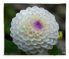 Gaylen Rose Dahlia 1 Fleece Blanket