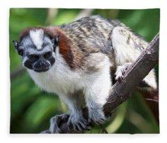 Geoffroy's Tamarin Saguinus Geoffroyi Fleece Blanket