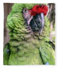 George The Parrot Fleece Blanket