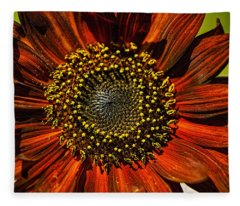 Gerber Daisy Full On Fleece Blanket